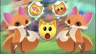 ВЕСЕЛАЯ Игра на Андроид! Animal Jam Play Wild - ЛУЧШАЯ Казульная игра на Андроид. Игра про животных.