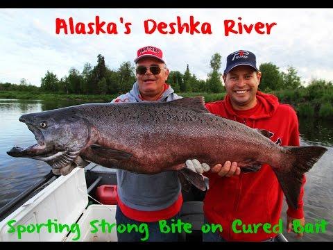 Deshka River King Salmon Fishing