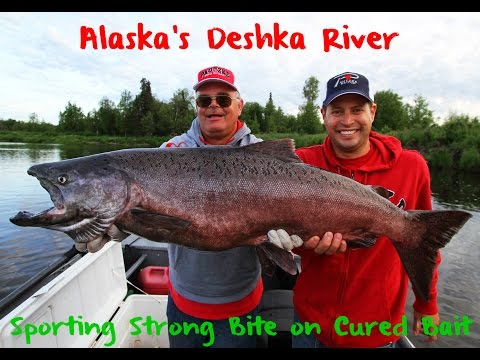 Deshka River King Salmon Fishing