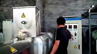 Corn puffed food processing equipment corn extrusion machine