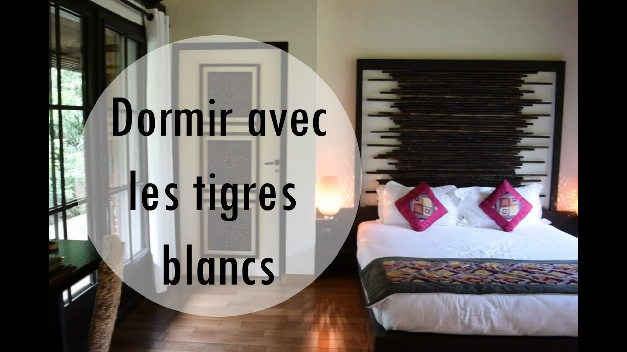 dormir au safari lodge du zoo de la fl che avec les tigres. Black Bedroom Furniture Sets. Home Design Ideas