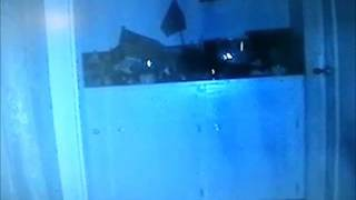 The Orb in my livingroom that caught on video