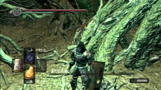 Dark souls all boss battles (7th)