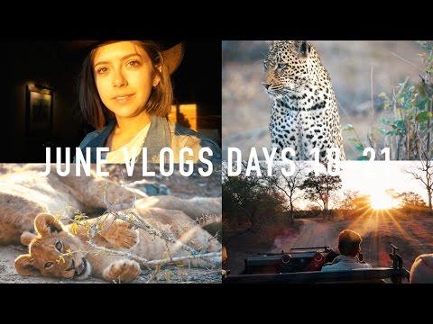 JUNE VLOGS DAYS 18-21: Mala Mala | sunbeamsjess