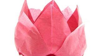 Origami Tissue Lotus