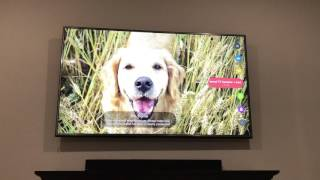 LG 4K TV HDR 65Uh61