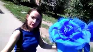 Как сделать БОЛЬШУЩУЮ розу из гофрированной бумаги(Как сделать розу из гофрированной бумаги., 2016-09-04T19:06:17.000Z)