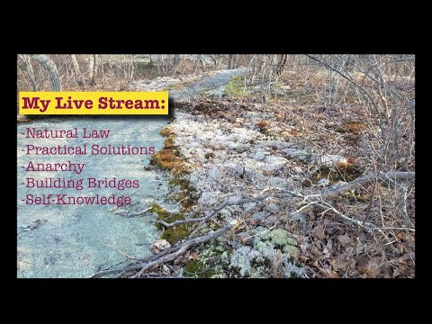 Live Stream from FLOTE.APP About Natural Law and Practical Solutions