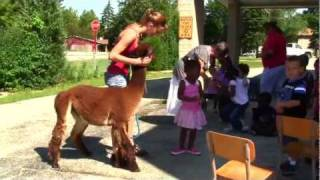 Call 815-600-6464 Animal Rental Chicago, Farm Zoo, Petting Zoo, Animal Rental Chicagoland