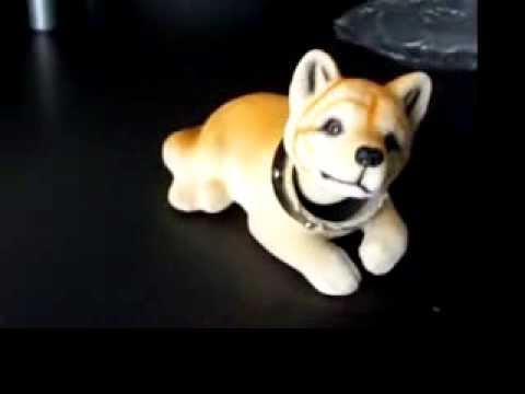 Perro Mueve Cabeza 1 Youtube