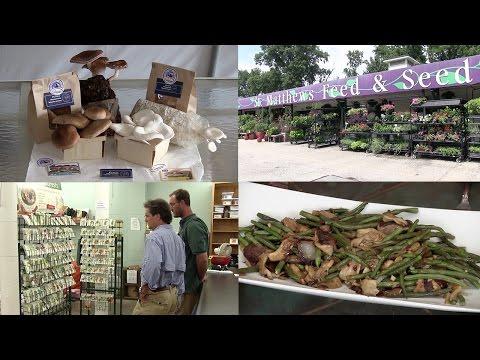 Mushroom Farming, Planting a Fall Garden & Asian Green Beans & Mushrooms Dish (Episode #366)