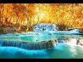 Download Healing Water Sounds ➤ Miracle Tone 432Hz Raise Positive Vibrations | Calming Waterfall Nature Music MP3 song and Music Video