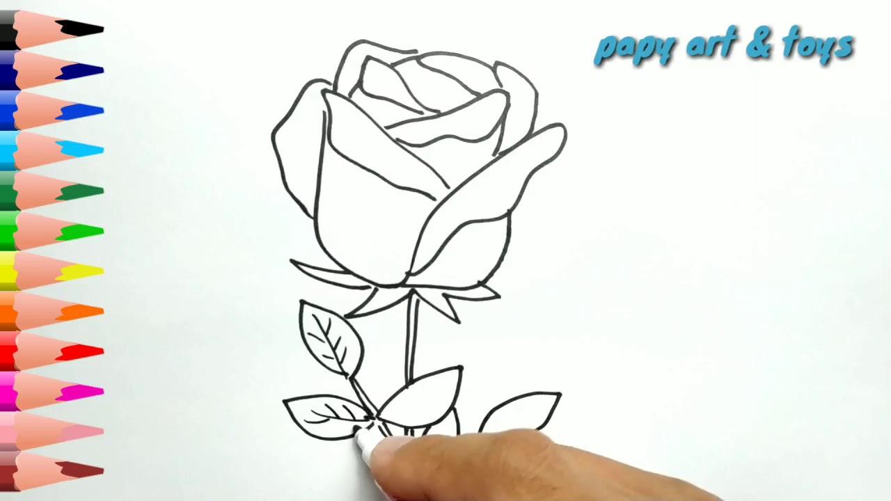 Ajaib Belajar Cara Menggambar Bunga Mawar Mewarnai Kartun Dengan Mudah Anak Indonesia Menggambar Youtube