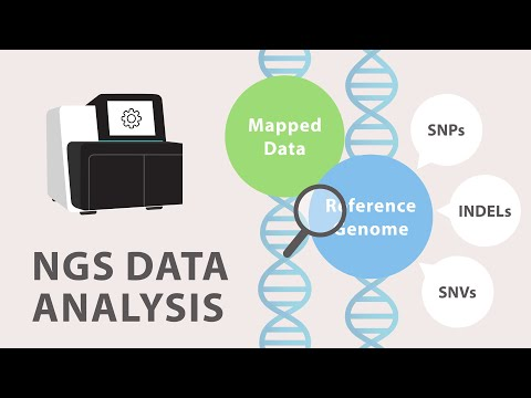 4) Next Generation Sequencing (NGS) - Data Analysis