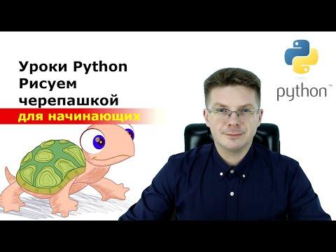 Уроки Python / Рисуем с помощью черепашки / Подключение модуля Turtle