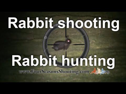 Rabbit Shooting, Hunting with 22 rimfire rifle Lamping Rabbits 2021 /22