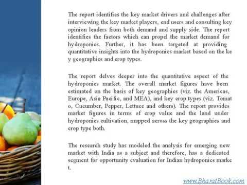 Global Hydroponics Market