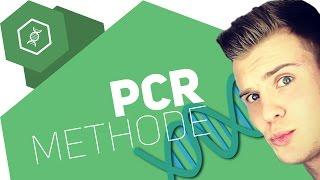 Die PCR-Methode einfach erklärt