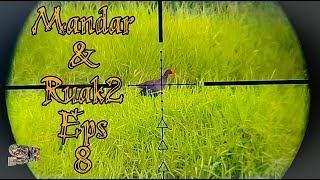 Berburu Burung Mandar & Ruak Ruak Eps8