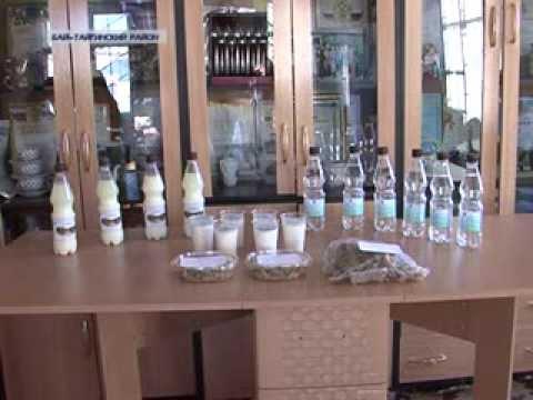 """Кумыс напиток долголетия. ГУП """"Бай Тал"""" открывает цех по производству кумыса"""