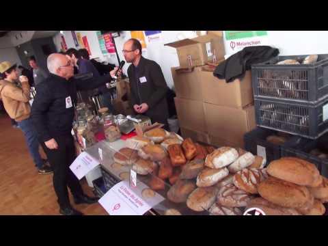 JOURNÉE DE L'ÉCOLOGIE DE LA FRANCE INSOUMISE - #EcologieFi