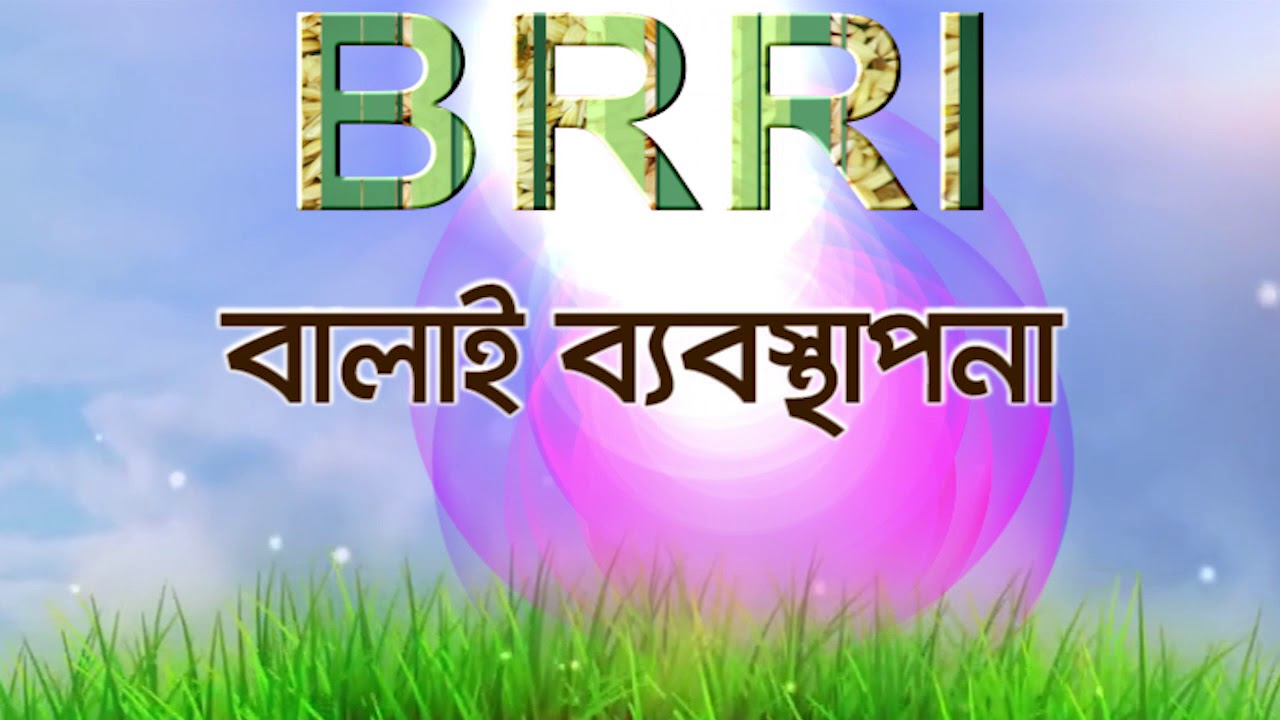 Download About BRRI