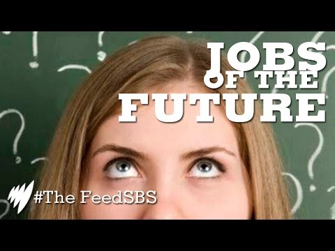 Jobs of the future: what will yours be? I The Feed