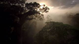 Enigma- Earth Chanting