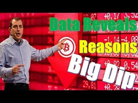 Andreas M. Antonopoulos _ Future of Bitcoin's - Data Reveals the Reasons Behind Bitcoin's Big Dip