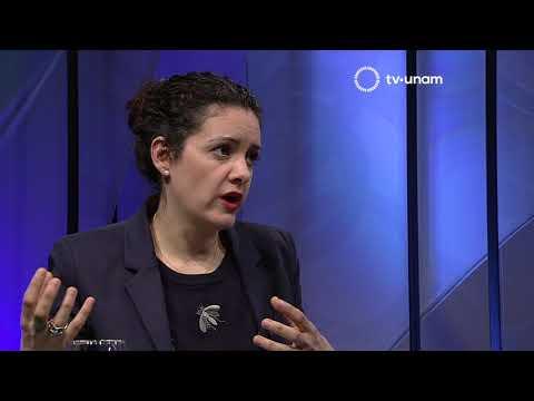 Observatorio cotidiano. Corrupción en México a propósito de La Estafa Maestra con Pedro Salazar