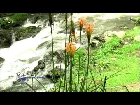 Catálogo de Turismo de Naturaleza (Puebla, México) Videos De Viajes