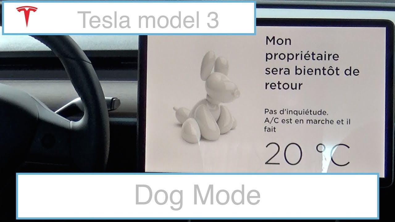 Tesla model 3 - Présentation du dog mode - YouTube