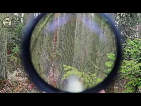 Hunting In Poland ; Roe Buck Hunt; Driven Hunt ;red Deer Hunt