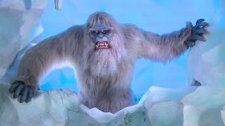 New Yeti animatronic & effects on Matterhorn Bobsleds at Disneyland