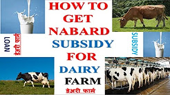 Dairy Farm || Subsidy from NABARD || Dairy farm loan || Subsidy procedure