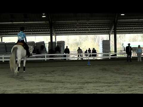Horse 4P3