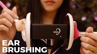 ASMR Relaxing 3Dio Ear Brushing (No Talking)