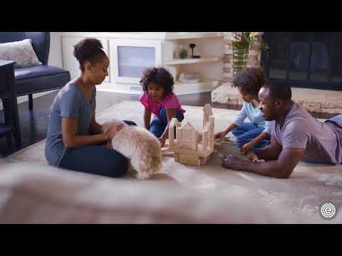 EWG Explains: How to reduce toxic chemicals in your household dust