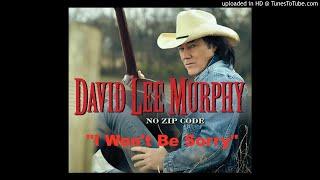 David Lee Murphy 34 I Won 39 T Be Sorry 34