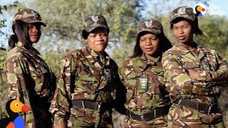 Black Mambas: These Women Save Animals From Extinction | The Dodo