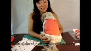✂ Diy Dog Clothes: Make Easy 5min Pattern Free Spaghetti Shirt For Dogs ♡
