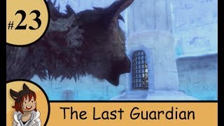 The last Guardian part 23- Rase the elevator