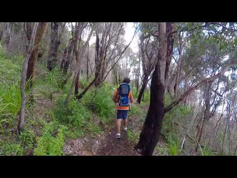 A hike with kids in the Walpole Nornalup National Park, Western Australia