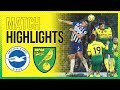 Norwich City 0-2 Watford | Onel Hernandez Reaction