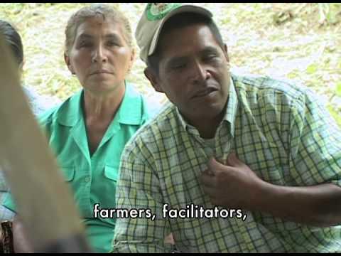 Saving the Seed - Documentary Short