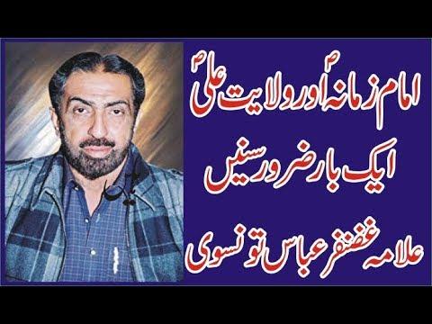 Allama Ghazanfar Abbas Tonsvi Wilyat E Ali Awas