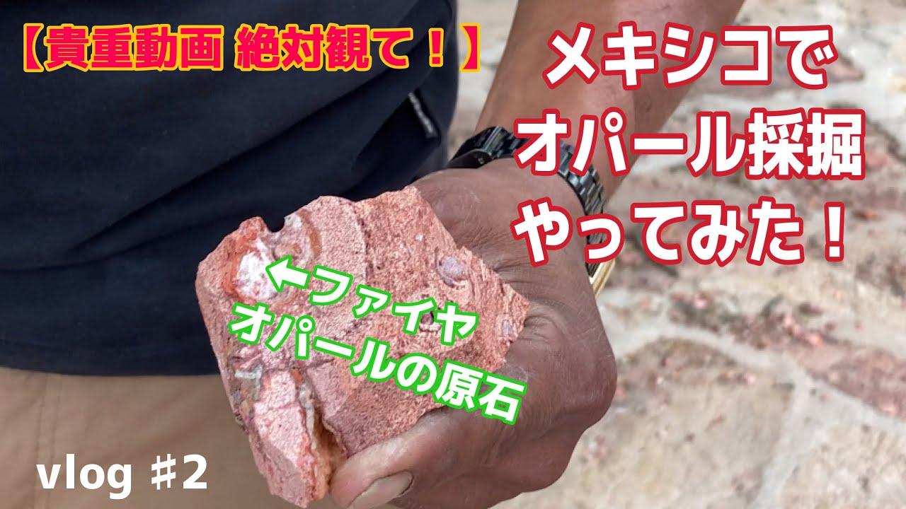 【結果発表】メキシコにファイヤーオパール採掘しにきた。2日目