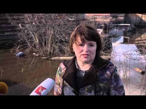 Лариса Каманина об оказании адресной помощи в Великом Устюге