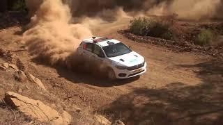Fiat Egea/Tipo Hatchback Rally Car