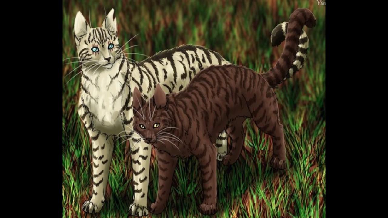 Картинки кисточки из котов воителей
